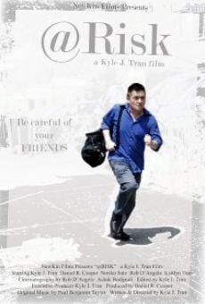 Ver película @Risk