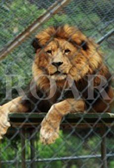 Roar on-line gratuito