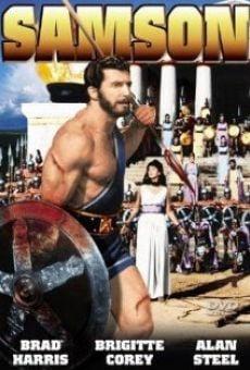 Película: Rocha, el hijo de Sansón