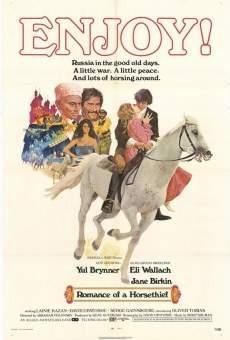 Il romanzo di un ladro di cavalli online