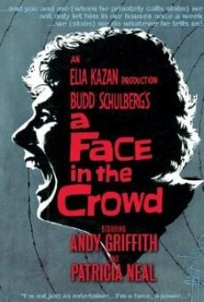 A Face in the Crowd online free