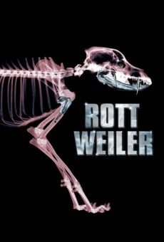 Rottweiler: el perro del diablo
