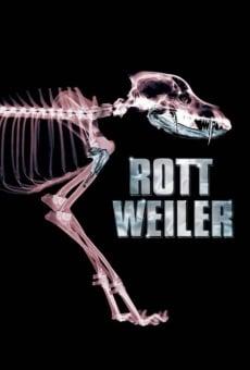 Ver película Rottweiler