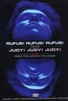 Ver película Rufus Wainwright canta a Judy Garland