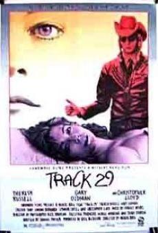 Ver película Ruta 29