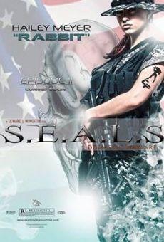 Watch S.E.A.L.S. Domestic Warfare online stream