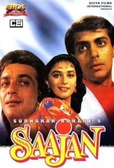 Ver película Saajan