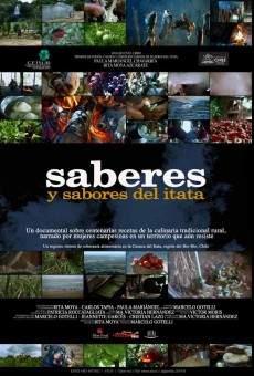 Ver película Saberes y sabores del Itata