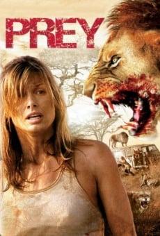 Ver película Safari sangriento
