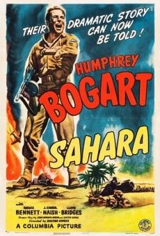 Sahara gratis