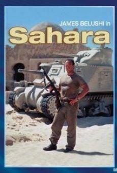 Ver película Sahara: La última misión