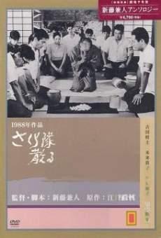 Ver película Sakura-tai Chiru