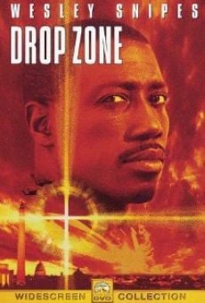 Drop Zone online free