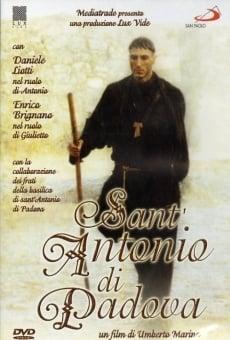 Película: San Antonio de Padua