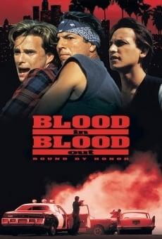 Ver película Sangre por sangre