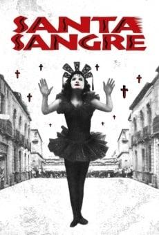 Ver película Santa Sangre