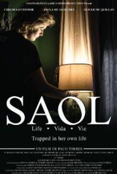 Ver película Saol
