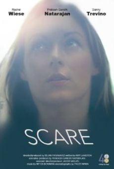 Ver película Scare