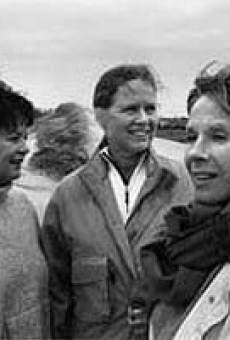 Ver película Schwestern im Leben