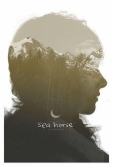 Ver película Sea Horse