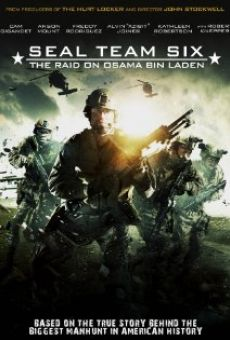 Seal Team Six: The Raid on Osama Bin Laden online free