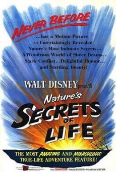 A True-Life Adventure: Secrets of Life online streaming
