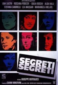 Ver película Secretos secretos