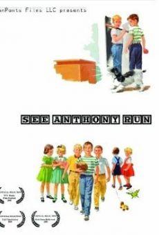 See Anthony Run streaming en ligne gratuit