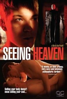 Ver película Seeing Heaven