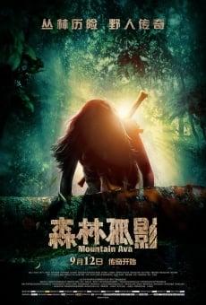 Ver película Sen Lin Gu Ying