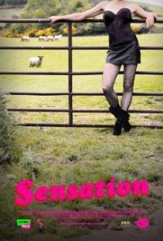 Ver película Sensation