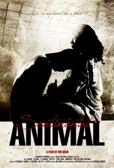 Ver película Sentimental Animal
