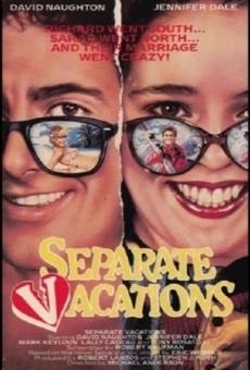 Ver película Separate Vacations