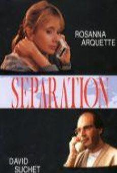 Ver película Separation