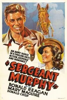 Ver película Sergeant Murphy