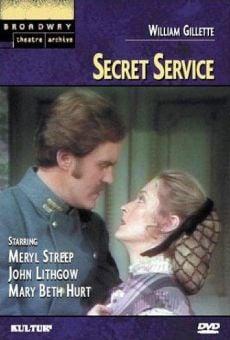 Servicio secreto online
