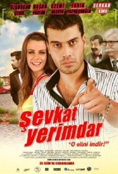 Sevkat Yerimdar online