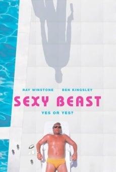 Ver película Sexy Beast