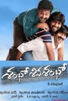 Ver película Shambo Shiva Shambo