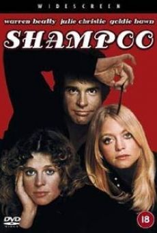 Shampoo on-line gratuito