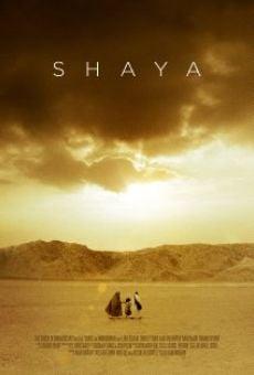 Ver película Shaya