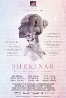 Shekinah: The Intimate Life of Hasidic Women gratis