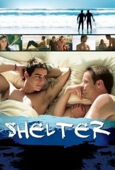 Shelter online gratis