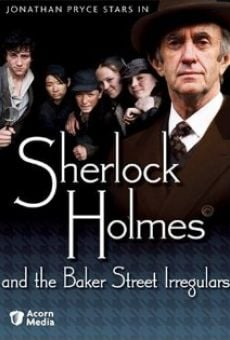 Ver película Sherlock Holmes and the Baker Street Irregulars