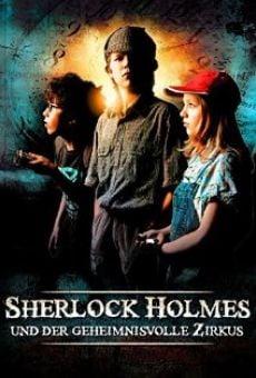 Ver película Sherlock Holmes nevében