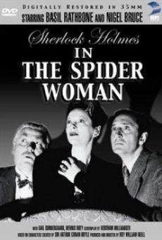 La donna ragno online