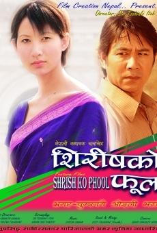 Ver película Shiris ko Phool