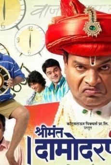 Ver película Shrimant Damodar Pant