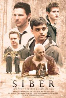 Ver película Siber