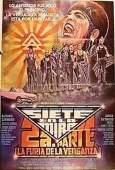 Ver película Siete en la mira 2: La furia de la venganza